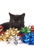 Arqueamientos del gato negro y de la Navidad Imagenes de archivo