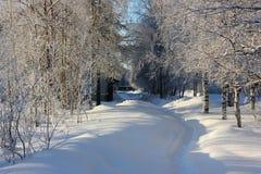 Arquitectura da cidade do inverno Fotografia de Stock