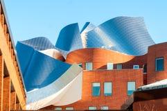 Arquitectura de Gehry Imágenes de archivo libres de regalías