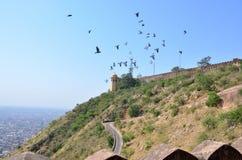 Arquitectura de la opinión de Nakhargar del fuerte de la India Jaipur de la ciudad desde arriba Foto de archivo