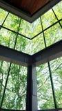 Arquitectura de madera de la ventana con verde Imagenes de archivo