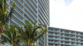 Arquitectura de Miami Beach con las palmeras almacen de metraje de vídeo
