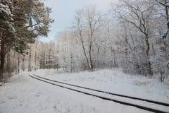 Arquitectura tradicional rusa Ferrocarril hermoso del indicador estrecho a través de árboles nevosos fotos de archivo