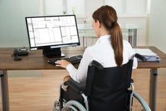 Arquiteto On Wheelchair Looking no modelo no computador Fotos de Stock Royalty Free