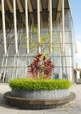 Arquitetura & ajardinar modernos Foto de Stock Royalty Free