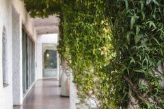 Arquitetura calma Fotos de Stock Royalty Free