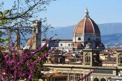 Arquitetura da cidade com igreja Santa Maria del Fiore no dia de mola com flores, Florença Fotos de Stock Royalty Free