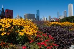 Arquitetura da cidade de Chicago em um dia ensolarado brilhante Imagens de Stock Royalty Free