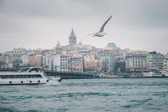 Arquitetura da cidade de Istambul e panorama de Bosporus com gaivota e barco Imagens de Stock Royalty Free