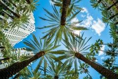 Arquitetura da cidade de Miami Beach fotos de stock