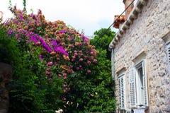 Arquitetura de Dubrovnik Imagens de Stock