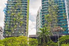 Arquitetura de Eco Construção verde do arranha-céus com as plantas que crescem na fachada Ecologia e vida verde na cidade, ambien Fotos de Stock