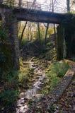 Arquitetura e natureza de Miskolc, Lillafured vermelho no outono imagem de stock royalty free