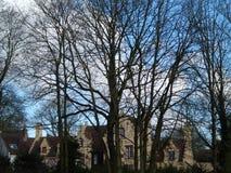 Arquitetura europeia através dos ramos de árvore Fotos de Stock