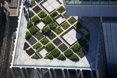 Arquitetura moderna do jardim superior do telhado Fotos de Stock Royalty Free