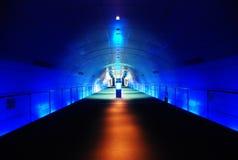 Arquitetura moderna do túnel Foto de Stock