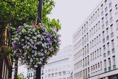 Arquitetura no centro de cidade de Londres em Mayfair fotos de stock royalty free