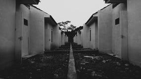 Arquitetura preto e branco Imagens de Stock