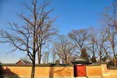 Arquitetura tradicional coreana Imagem de Stock Royalty Free