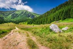 Arrástrese en las montañas en verano, Polonia de Tatras Fotografía de archivo