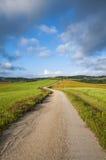 Arrástrese en un campo verde, Toscana, Italia Fotografía de archivo