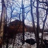 Arrêt par les bois une soirée neigeuse Photographie stock libre de droits