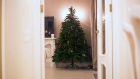 Arrêtez le mouvement L'arbre de Noël est graduellement les boules naissantes, guirlandes, illumination de lumières Aucune personn banque de vidéos