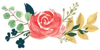 Arr color de rosa de la flor del extracto de la peonía del vintage bohemio de la flora de la acuarela stock de ilustración