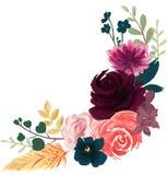 Arr color de rosa de la flor del extracto de la peonía del vintage bohemio de la flora de la acuarela libre illustration