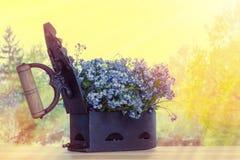 Arrabio viejo con las flores Imágenes de archivo libres de regalías