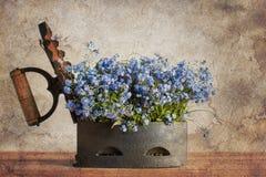 Arrabio viejo con las flores azules Imagenes de archivo
