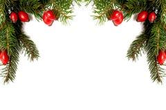 arragement圣诞节绿色红色 库存图片