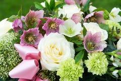 Arragement цветка с цветениями helleborus стоковые фотографии rf