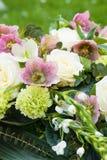 Arragement цветка с цветениями helleborus стоковое изображение