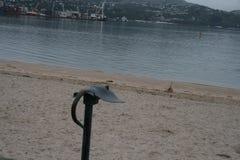 Arraia-lixa pelo mar Foto de Stock Royalty Free