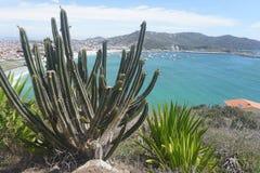Arraial hace Cabo - el Brasil imagen de archivo