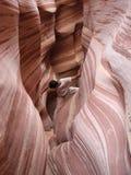 Arrampicandosi in canyon della scanalatura della zebra Fotografia Stock Libera da Diritti
