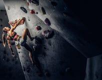 Arrampicarsi di pratica d'uso degli abiti sportivi della giovane donna su una parete all'interno fotografie stock libere da diritti