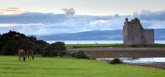 arran城堡小岛lochranza苏格兰 库存照片