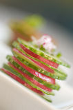 Arrancador del pepino y del rábano Foto de archivo libre de regalías