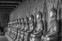 Arrange of buddha statue in black and white Stock Images
