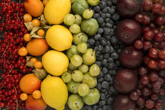 Arrange of fruits in rainbow colours. Colourful selection of fruits arranged in rainbow colours Royalty Free Stock Photos