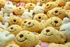 Arranged Bear dolls Stock Images