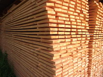 Arranged boards Stock Image