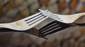 Arranged dining forks with reflection in glass and blurred background royalty free stock photography
