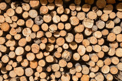 Arranged Firewood stack Royalty Free Stock Photos