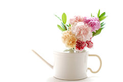 Arranged flower Stock Photography