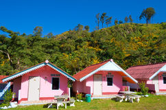 Arranged pink houses in front of a mountain Royalty Free Stock Image