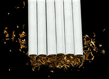 Arranged in a row cigarettes Royalty Free Stock Image