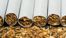 Arranged in a row cigarettes Royalty Free Stock Photos